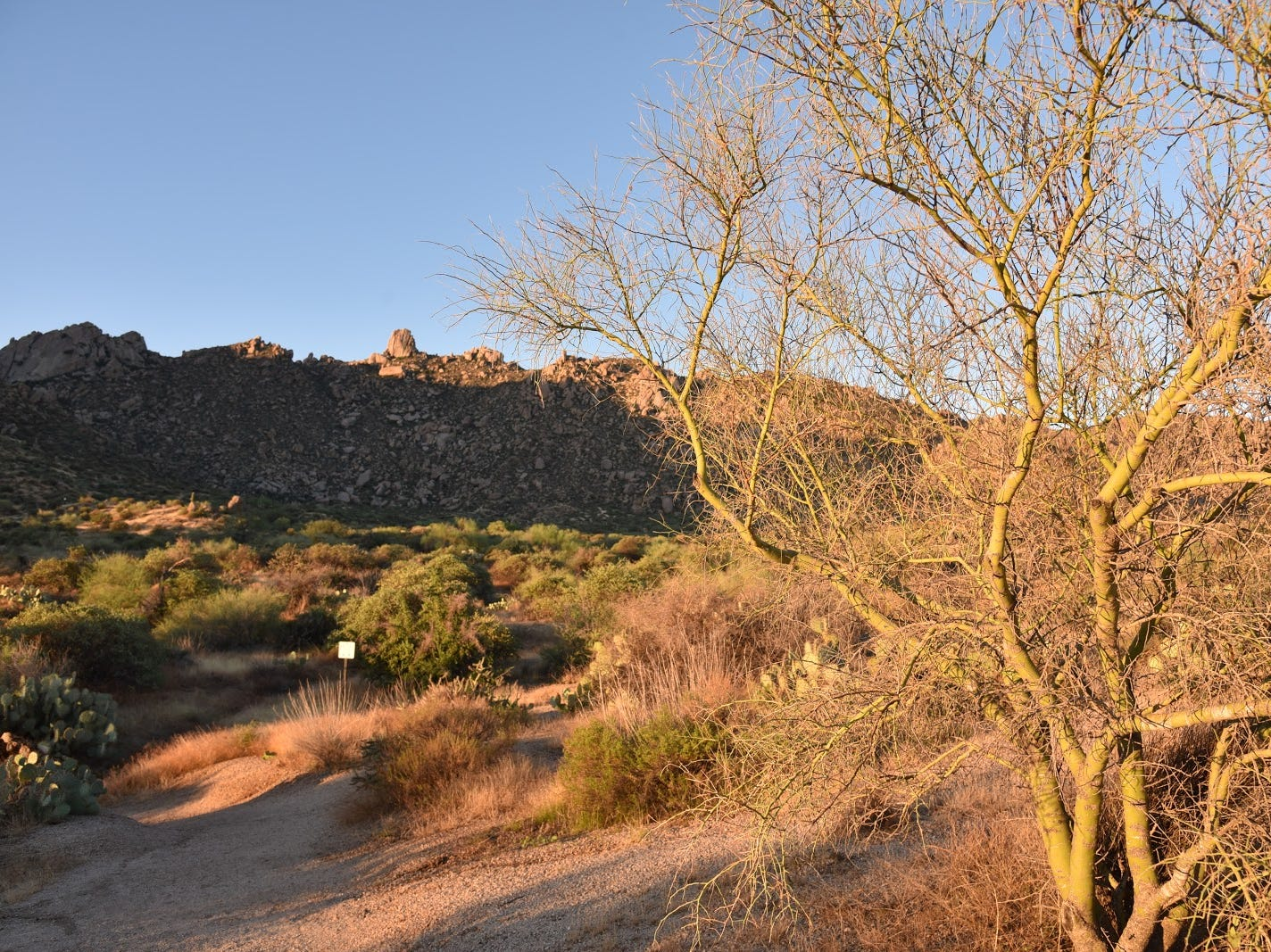 View of Tom's Thumb from near the trailhead.