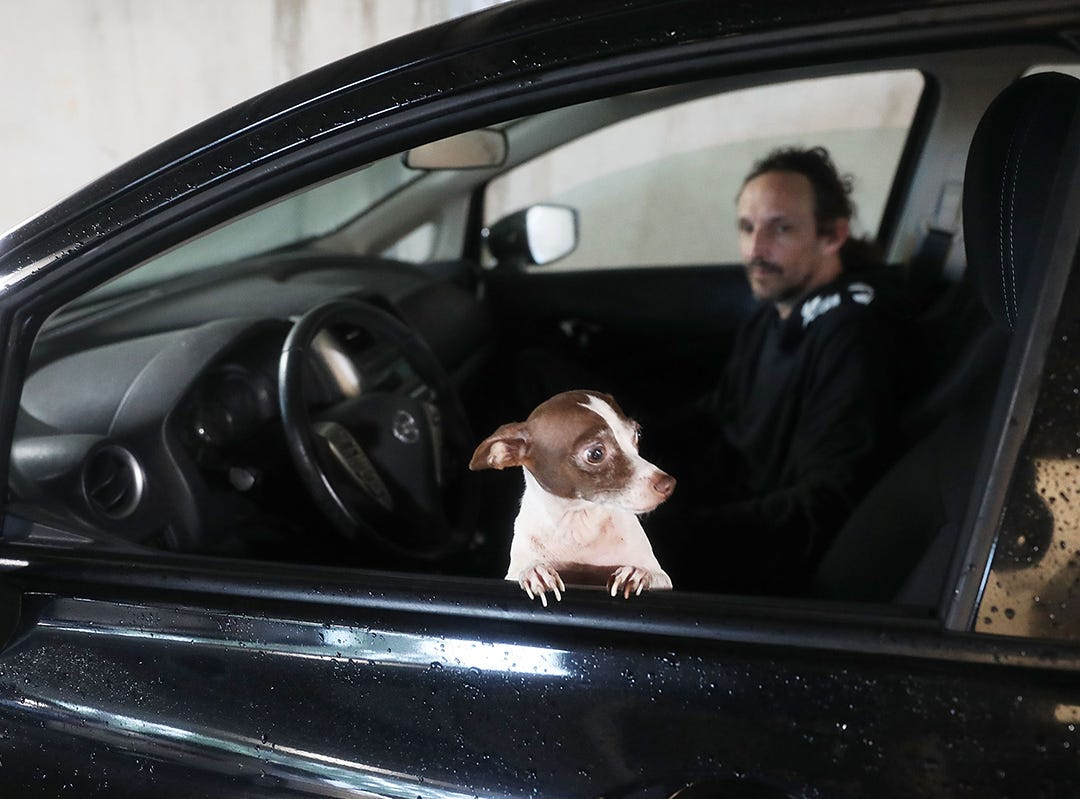 Scott Brazer y su perro Franklin se refugian en un estacionamiento mientras el huracán Michael atraviesa el área el 10 de octubre de 2018 en la Ciudad de Panamá, Florida. El huracán tocó tierra en el Panhandle de Florida como una tormenta de categoría 4.