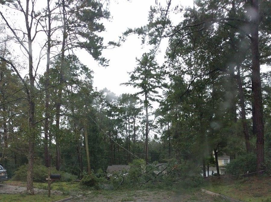 Tree and power line down across Merrimac Drive