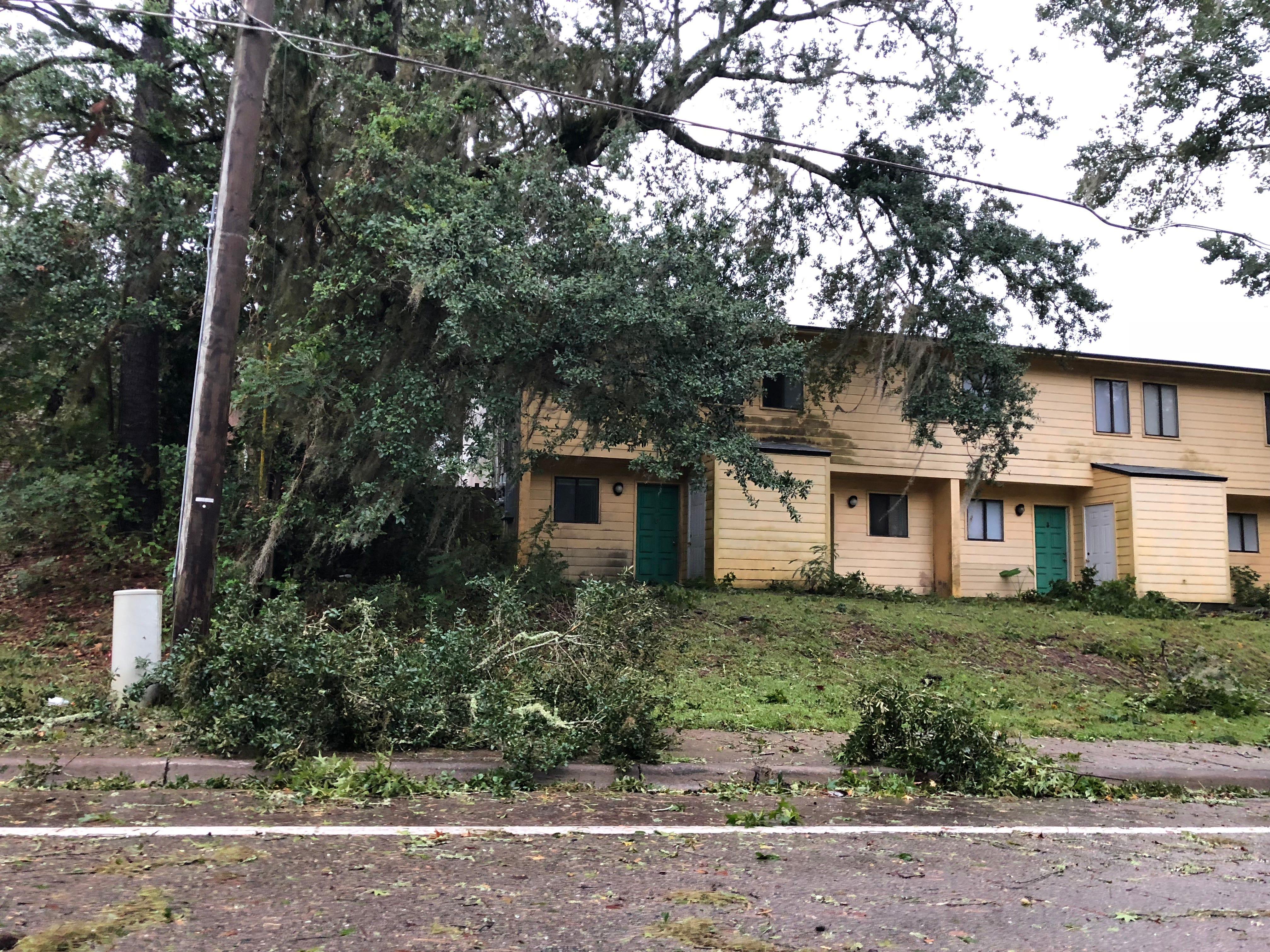 Debris off Sutor Road following Hurricane Michael.
