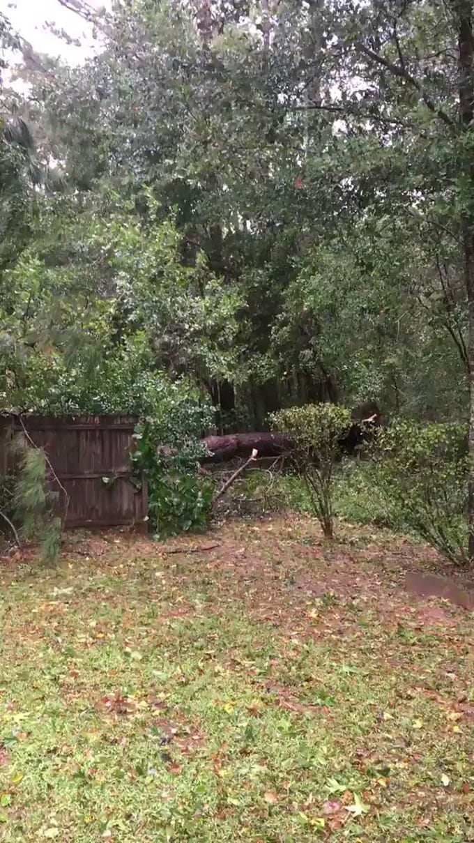 """Robert Brown writes, """"That's at least 50 yard coverage. Would've crushed my house. And we haven't reached the peak winds here in Tally """""""