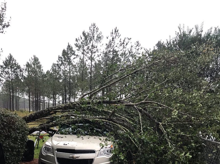 A tree down in Sylvester. Devastation lays in the wake of Hurricane Michael which made landfall in Mexico Beach on Wednesday afternoon.