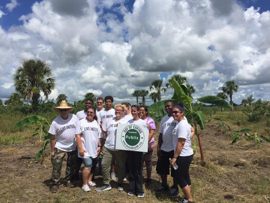 A group of employees from the Harbor Point Publix in Vero Beach who spent hours of their Day of Caring digging and planting a small banana plantation for the Save the Chimps sanctuary in Fort Pierce.