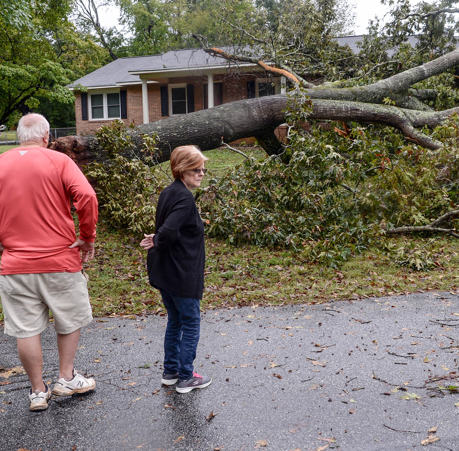 Tropical Storm Michael knocks tree onto family's home, but 2-year-old twins are unhurt