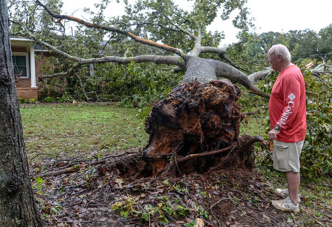 Ray Browning of Anderson look at a 60-year old oak tree which grazed the home of his son Adam Browning before sunrise, sparing the bedrooms. Rainfall from Hurricane Michael came through Anderson County on Thursday morning.