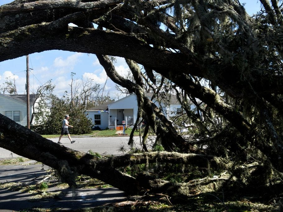 A fallen tree is seen in the aftermath of Hurricane Michael October 11, 2018 in Panama City, Florida. - Residents of the Florida Panhandle woke to scenes of devastation Thursday after Michael tore a path through the coastal region as a powerful hurricane that killed at least two people. (Photo by Brendan Smialowski / AFP)        (Photo credit should read BRENDAN SMIALOWSKI/AFP/Getty Images)