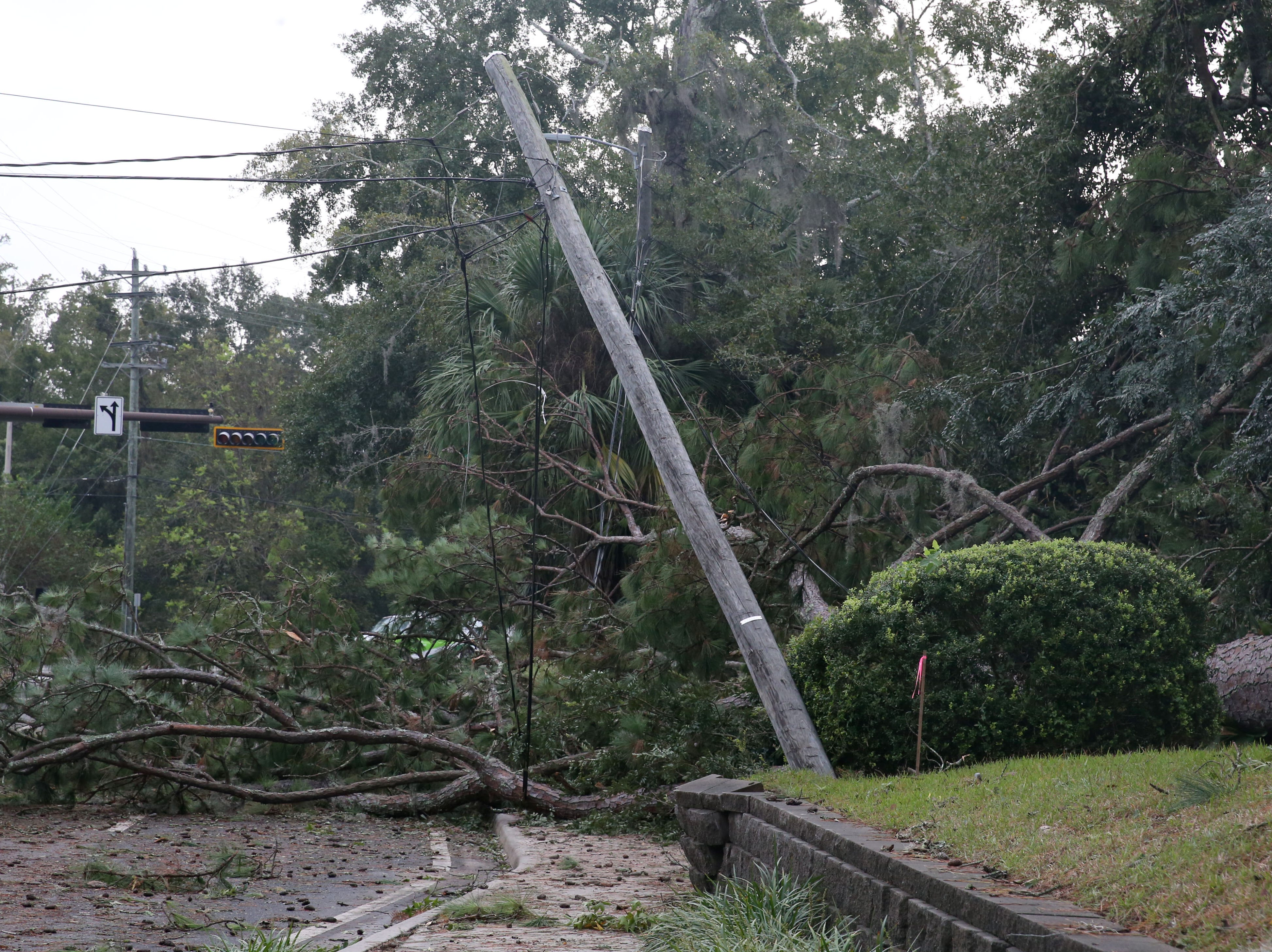 Trees and power lines blanket the streets of Tallahassee in a look at the aftermath of Hurricane Michael on Thursday, Oct. 11, 2018.