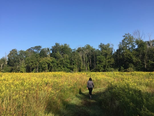 Cincinnati Nature Center, located in Union Township and Goshen, has 20 miles of hiking trails on its 1,800 acres of forests, fields, streams and ponds.
