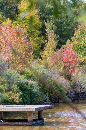 """Fabulous Fall Foliage"" will be presented from 10:30 to 11:30 a.m. on Friday, Oct. 19, at The Somerset County Park Commission Environmental Education Center, 190 Lord Stirling Road in the Basking Ridge section of Bernards, for ages infant to 5 with a parent."