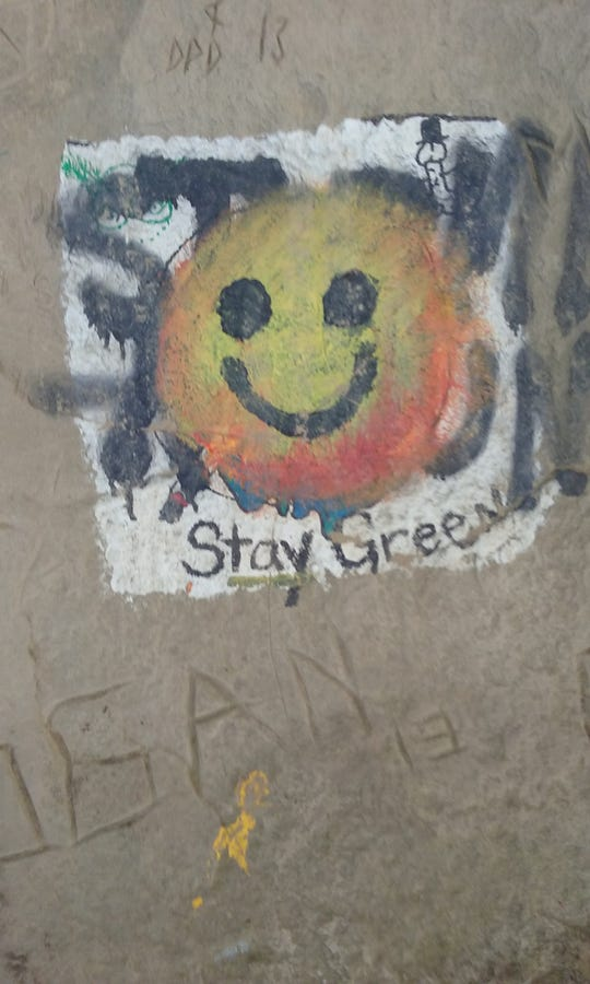 The amount of graffitti has grown on the cliffs of Ledges State Park.