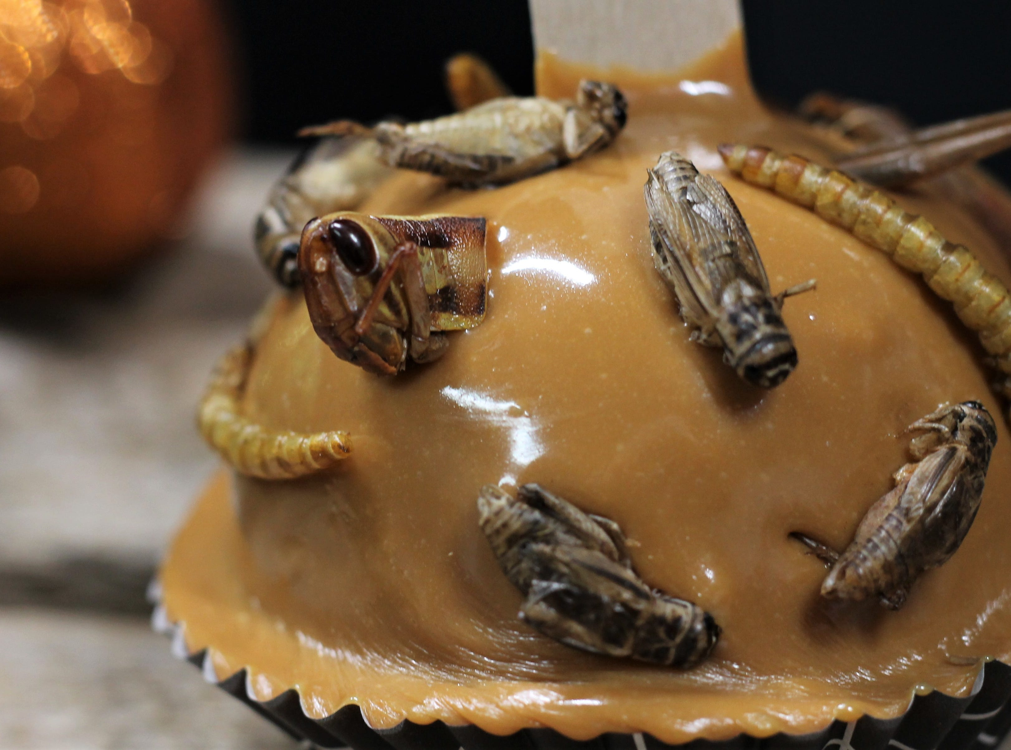 Add a few bugs to your caramel apples. Use larger insects like grasshoppers and crickets for a more dramatic effect.