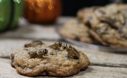 Adding crickets to the top of cookies about half way through the baking time will allow them to stand out.