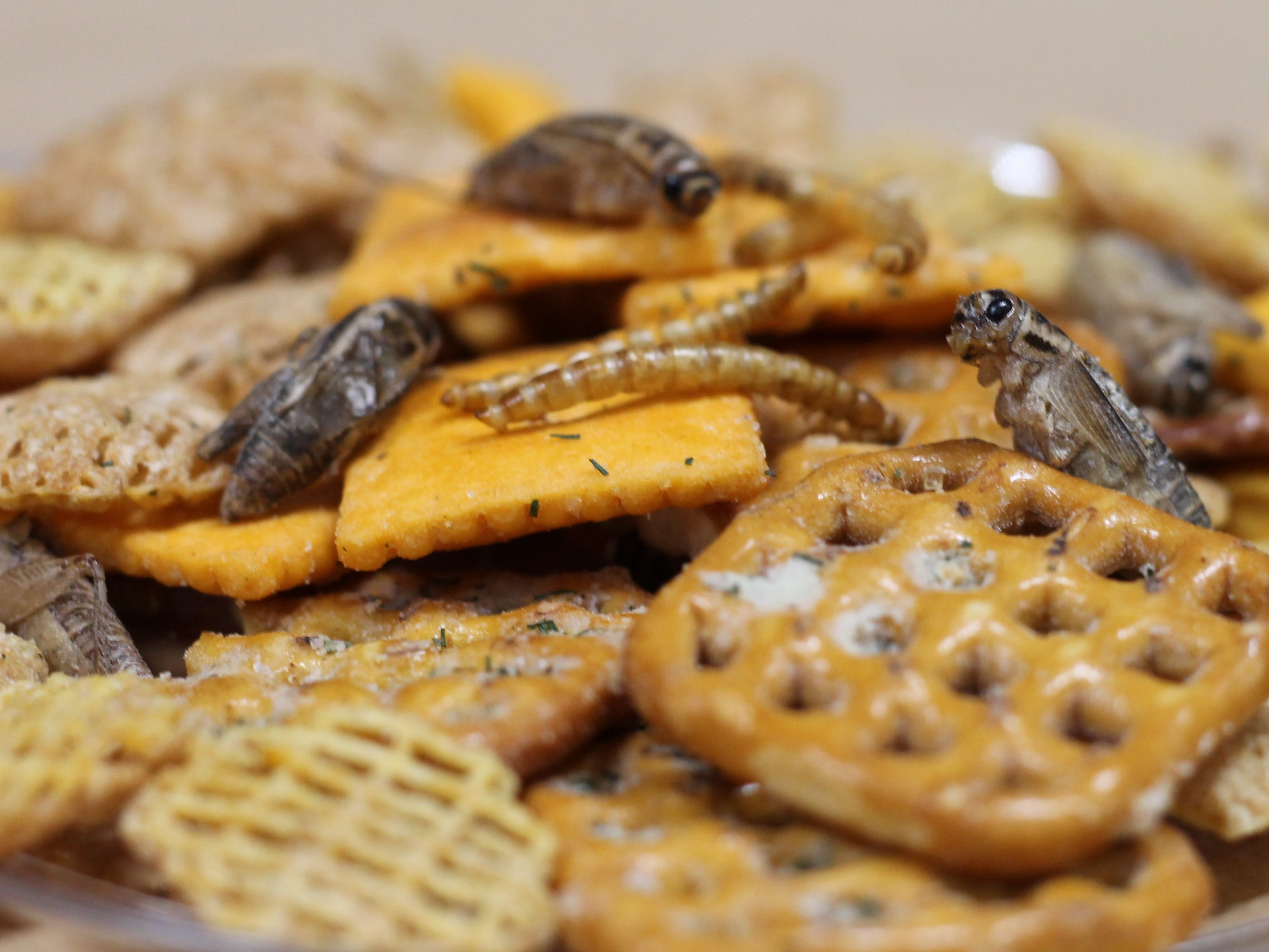 Add a few sour cream and onion flavored crickets and cheddar cheese larva to your favorite snack mix.