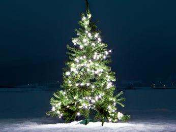 Salisbury holiday tree lighting happens Nov. 16