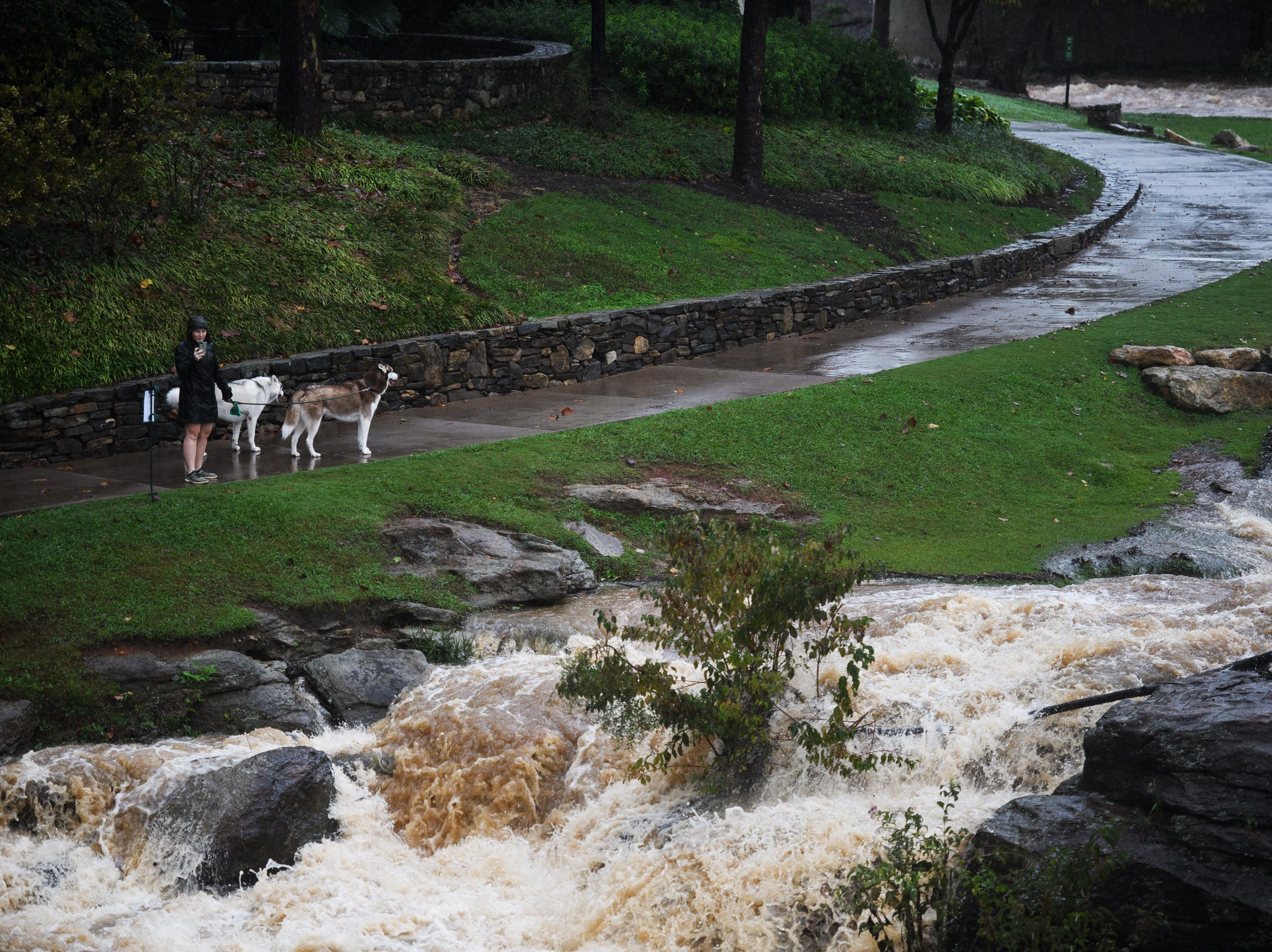 A woman walks his dogs along the Reedy River as Tropical Storm Michael hits the Greenville area on Thursday, Oct. 11, 2018.