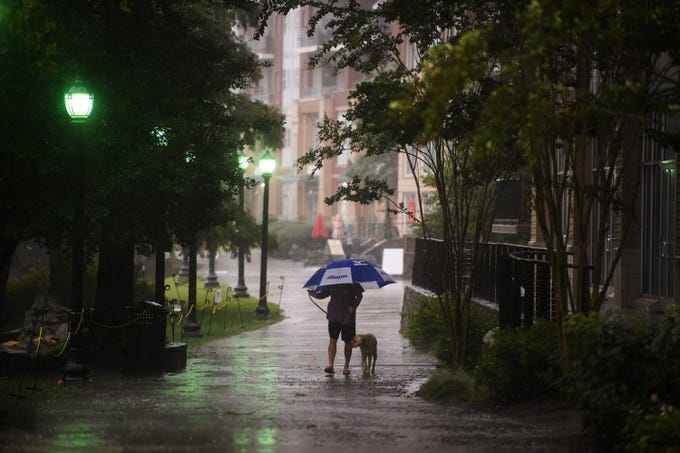 Christian Groomes walks his dog Riggs along the Reedy River as Tropical Storm Michael hits the Greenville area on Thursday, Oct. 11, 2018.
