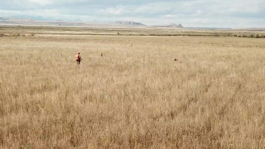 """It's surprises alot of landowners what people are willing to pay for that,"" Rob Studebaker says of access to private land for hunting or other activities. EntryG8.com, which Studebaker and two other Idaho men launched, is a web application that connects landowners and sportsman and women."