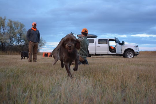 "Daivd Keil and Rob Studebaker bird hunt during a trip to Montana earlier this month.  ""It's something we put together as a way to connect landowners and sportsmen,"" Keil said of EntryG8.com."