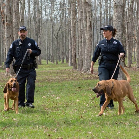 Handlers Marvin and Missy Carter walk with their dogs, K-9 Josey and K-9 Rogue.