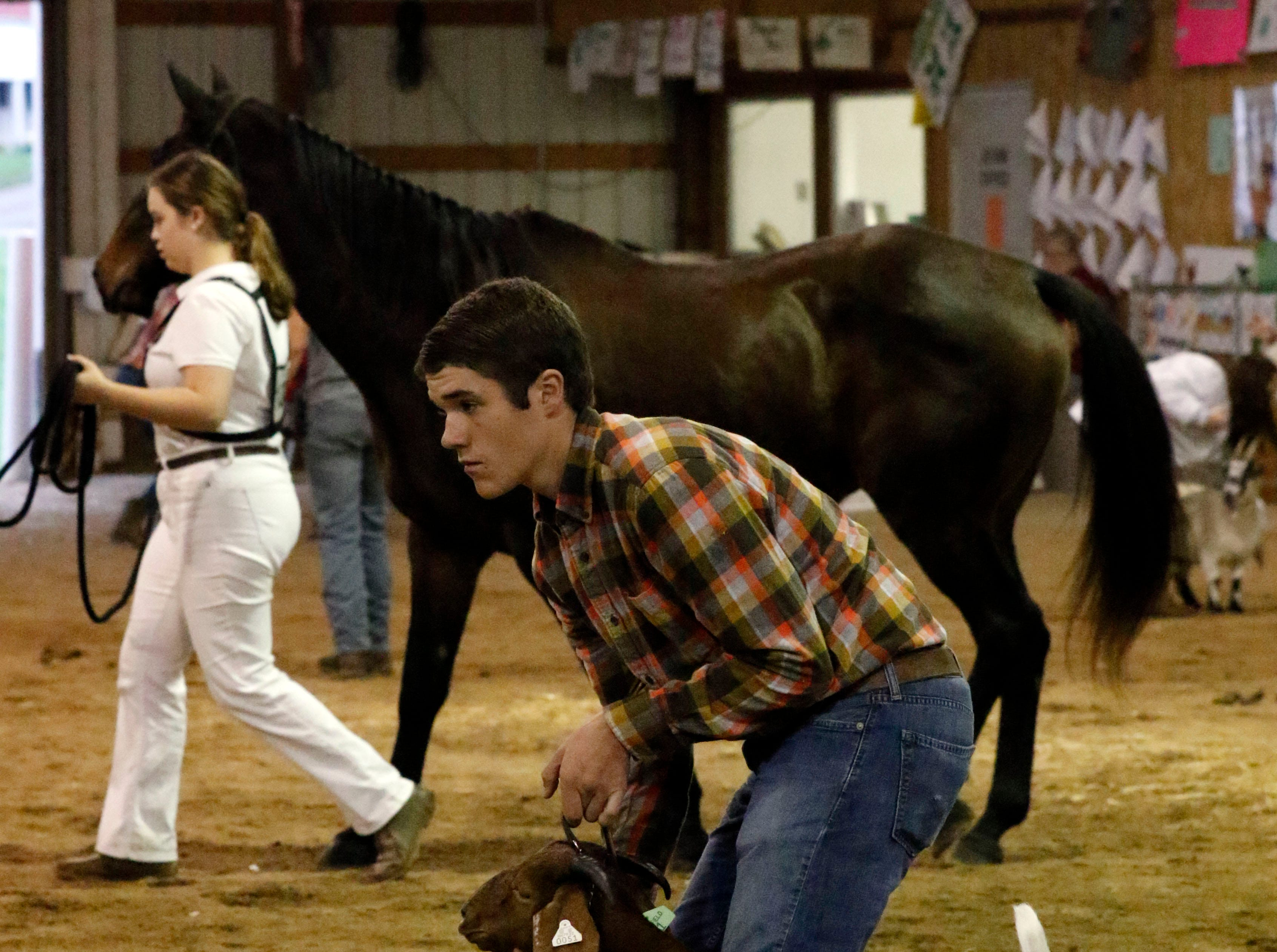 Josh Starner, 16, shows a dairy goat Thursday, Oct. 11, 2018, during the super showmanship competition at the Fairfield County Fair in Lancaster. Starner won the large animal super showmanship competition.