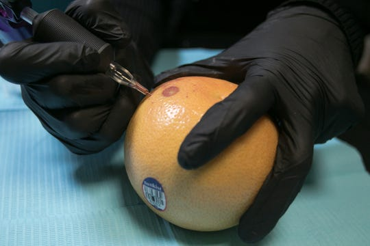 Tattoo artist Jamie Epsy, using a grapefruit, demonstrates her process of nipple and areola replacement at Lovely Monkey Tattoo in Whitmore Lake Thursday, Oct. 11, 2018.