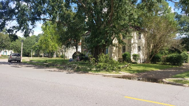 Fallen branches on Maxwell Air Force Base.