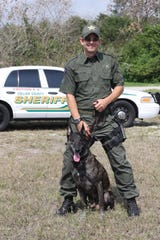 K-9 Bandit, of the Collier County Sheriff's Office, works with his handler, Sgt. William Gifford. Bandit was CCSO's longest-living K-9 after retirement. He died Sept. 29, 2018.