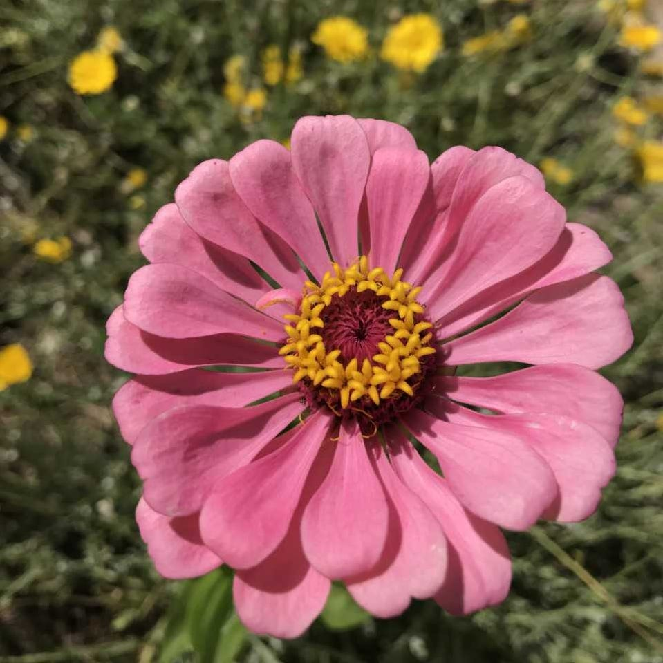 Deadheading decisions: Timing is everything