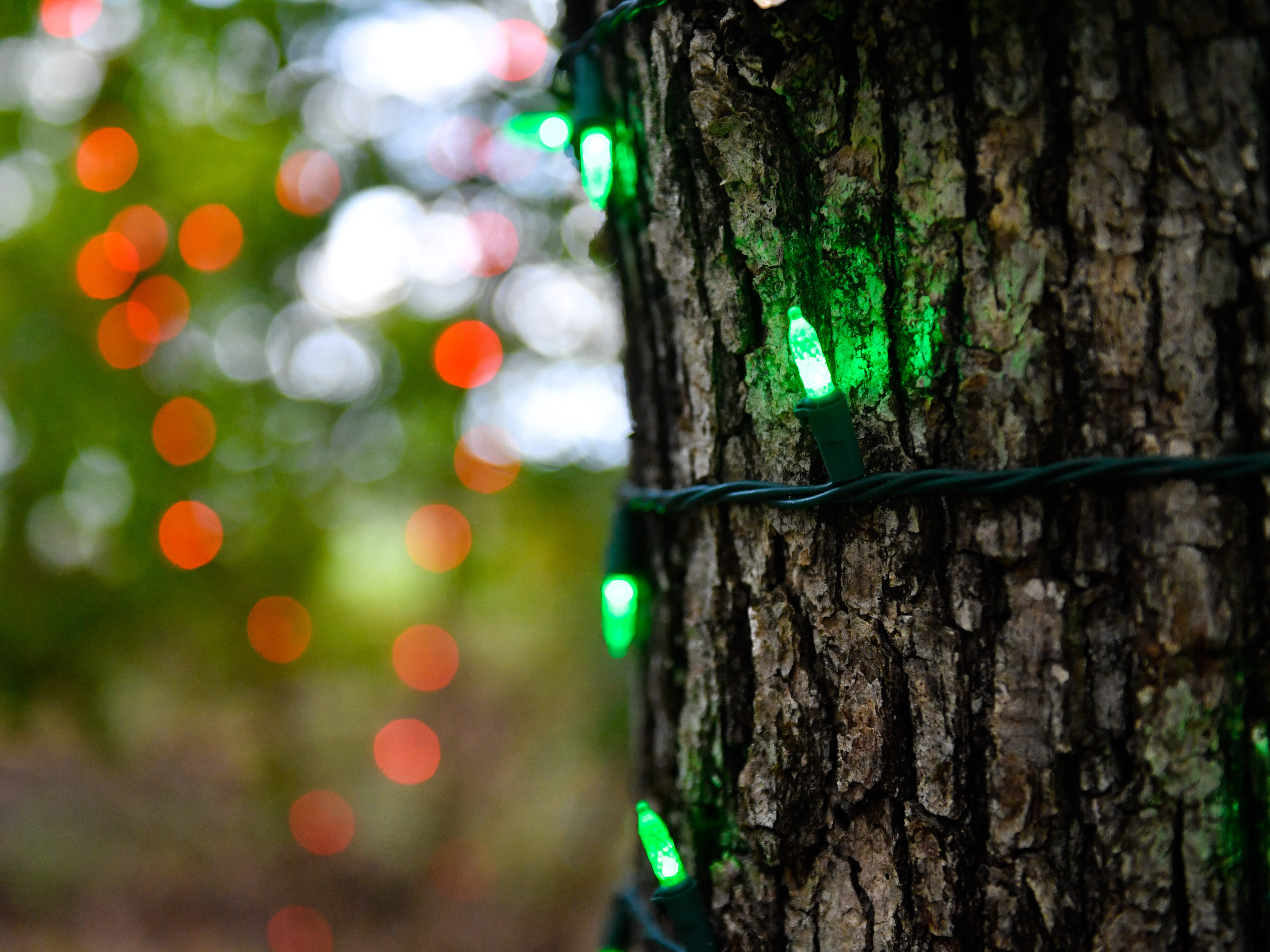 After it's completely set up, Christmas Magic will have over 600,000 lights up.