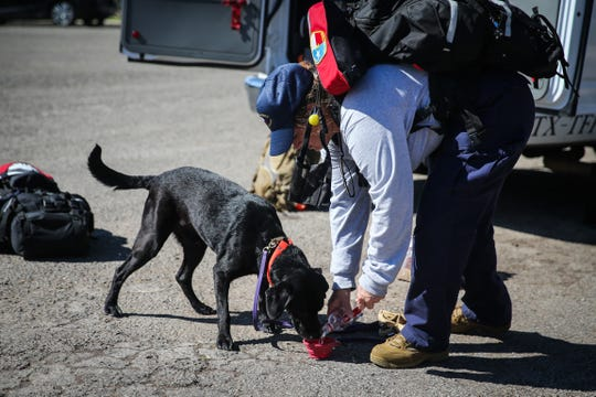 Texas Task Force 1 member gives water to her dog before setting out to search after South Llano River flooding Wednesday, Oct. 10, 2018, in Junction.