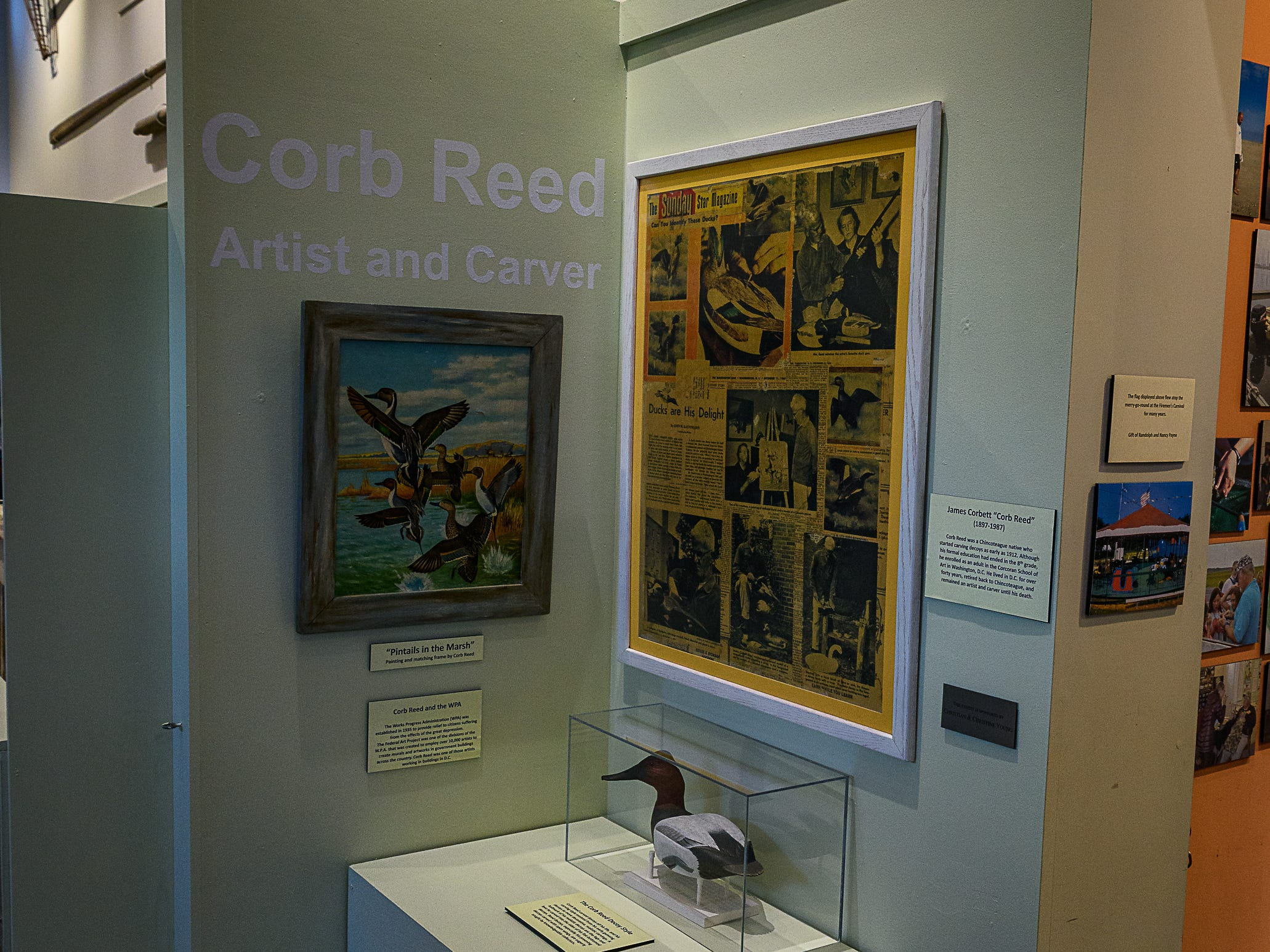 The new exhibit celebrating Corb Reed at Museum of Chincoteague.