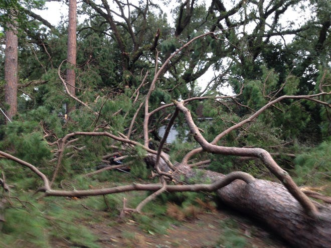 Betton Hills was a maze of fallen trees, limbs, power lines and debris on Thursday morning. One Toyota in the driveway was smashed beneath a fallen pine near the corner of Dillard Street and Lee Avenue. Randolph Circle north was cut off to through traffic thanks to a fallen tree. Centerville Road at Betton Road was blocked off because of destruction left by Hurricane Michael. All traffic lights were not working at of 9 .m.