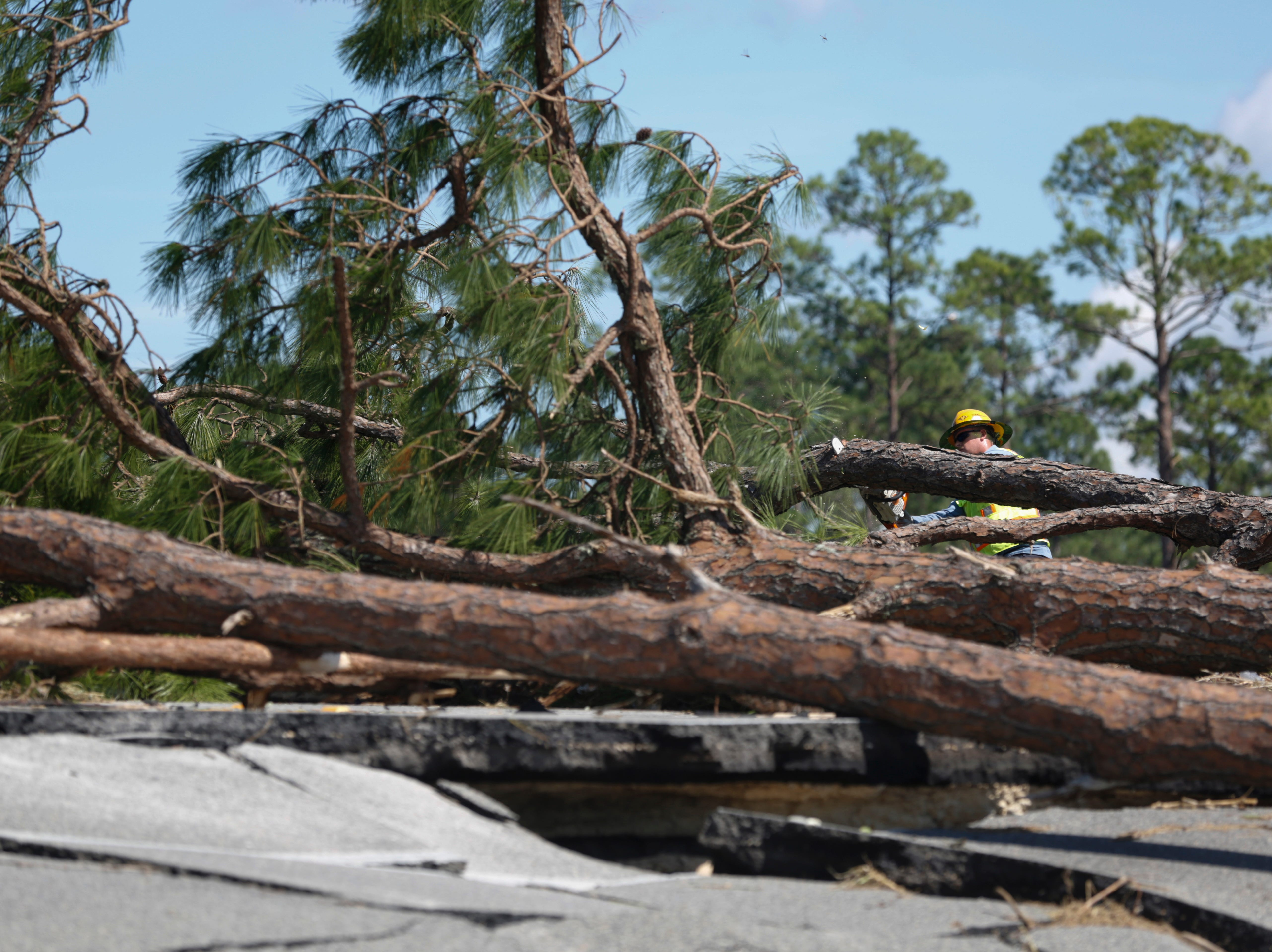 Crews from Team Fishel work to remove trees fallen on U.S. Highway 98 in Eastpoint, Fla. following Hurricane Michael Thursday, Oct. 11, 2018.