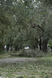 Destruction from Hurricane Michael is seen across Apalachicola Oct. 10, 2018. The City is celebrating its trees with a festival this  month.
