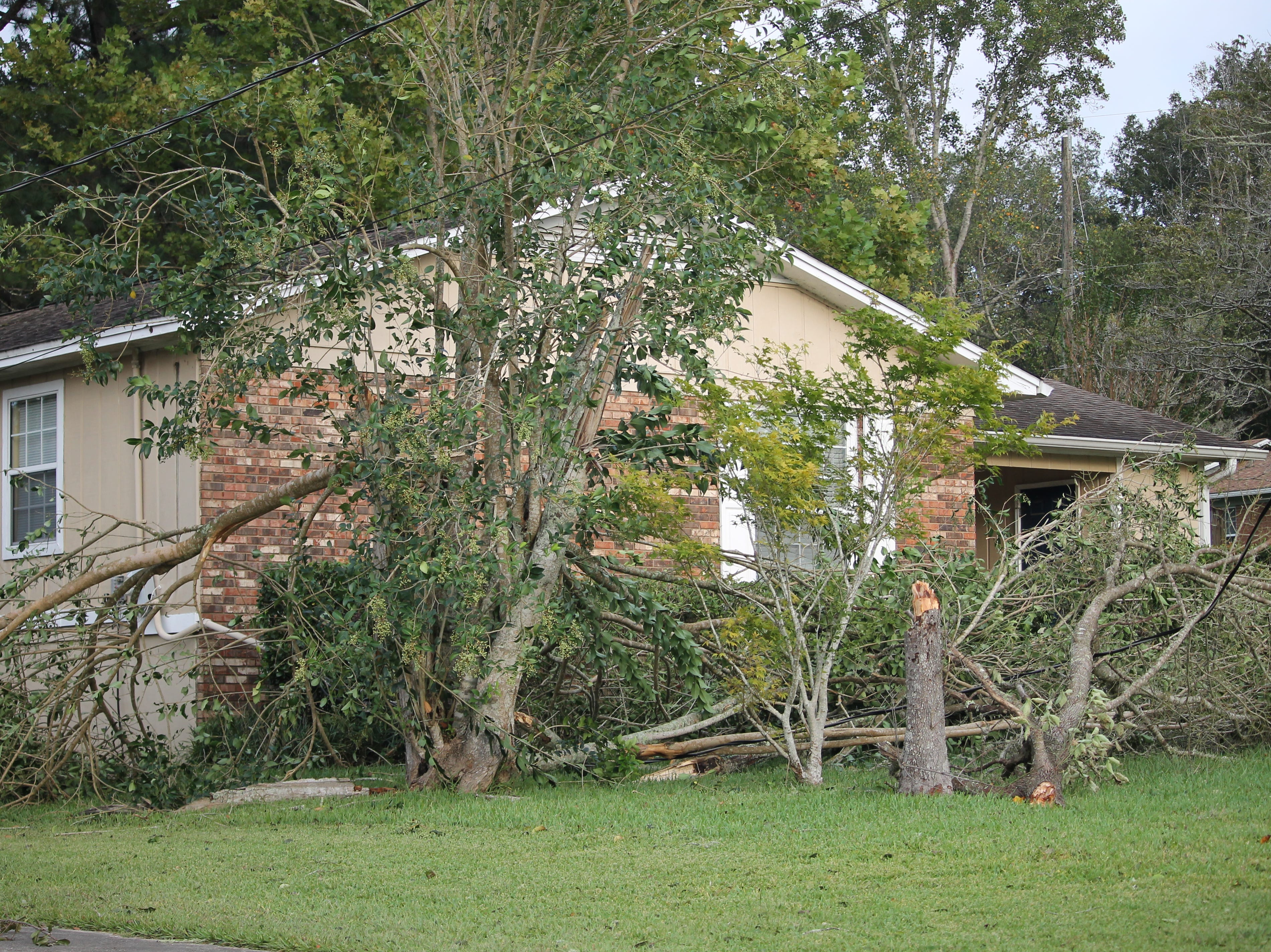 Multiple downed trees barely miss a house in Tallahassee.