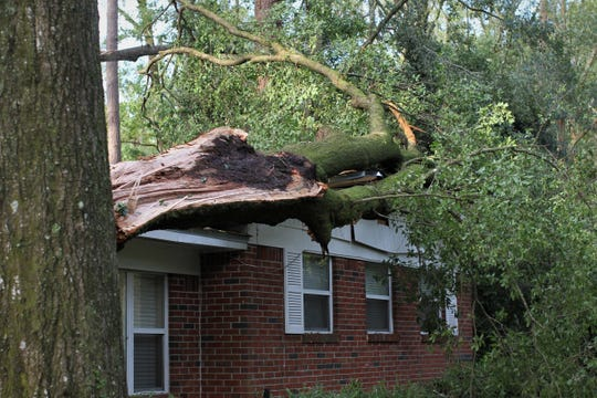 Damage from Hurricane Michael in Tallahassee along Sherwood Drive, Oct. 11, 2018.