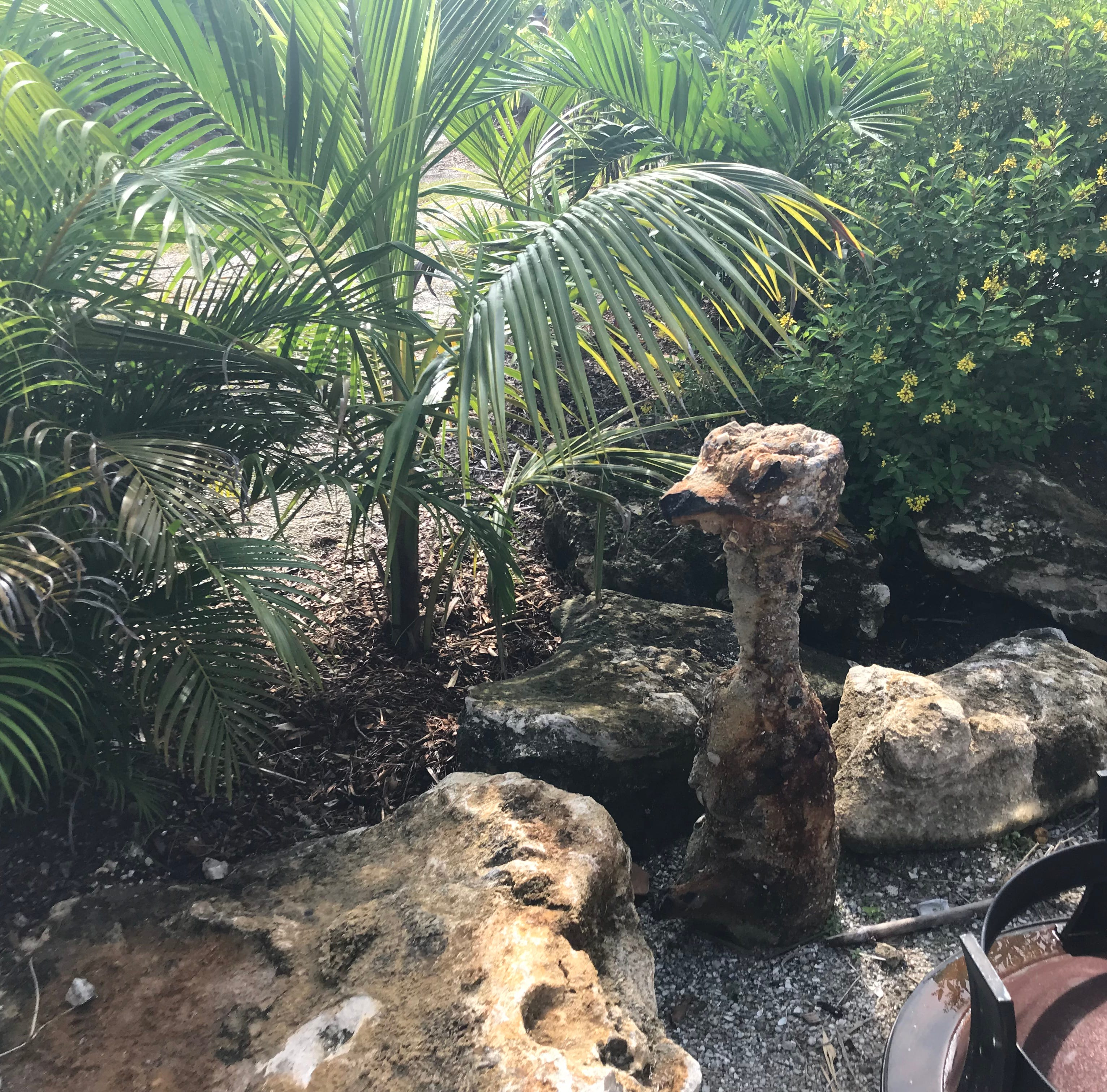 Unexploded WWII-era rocket found in Orchid Island garden display by Army Corps contractors