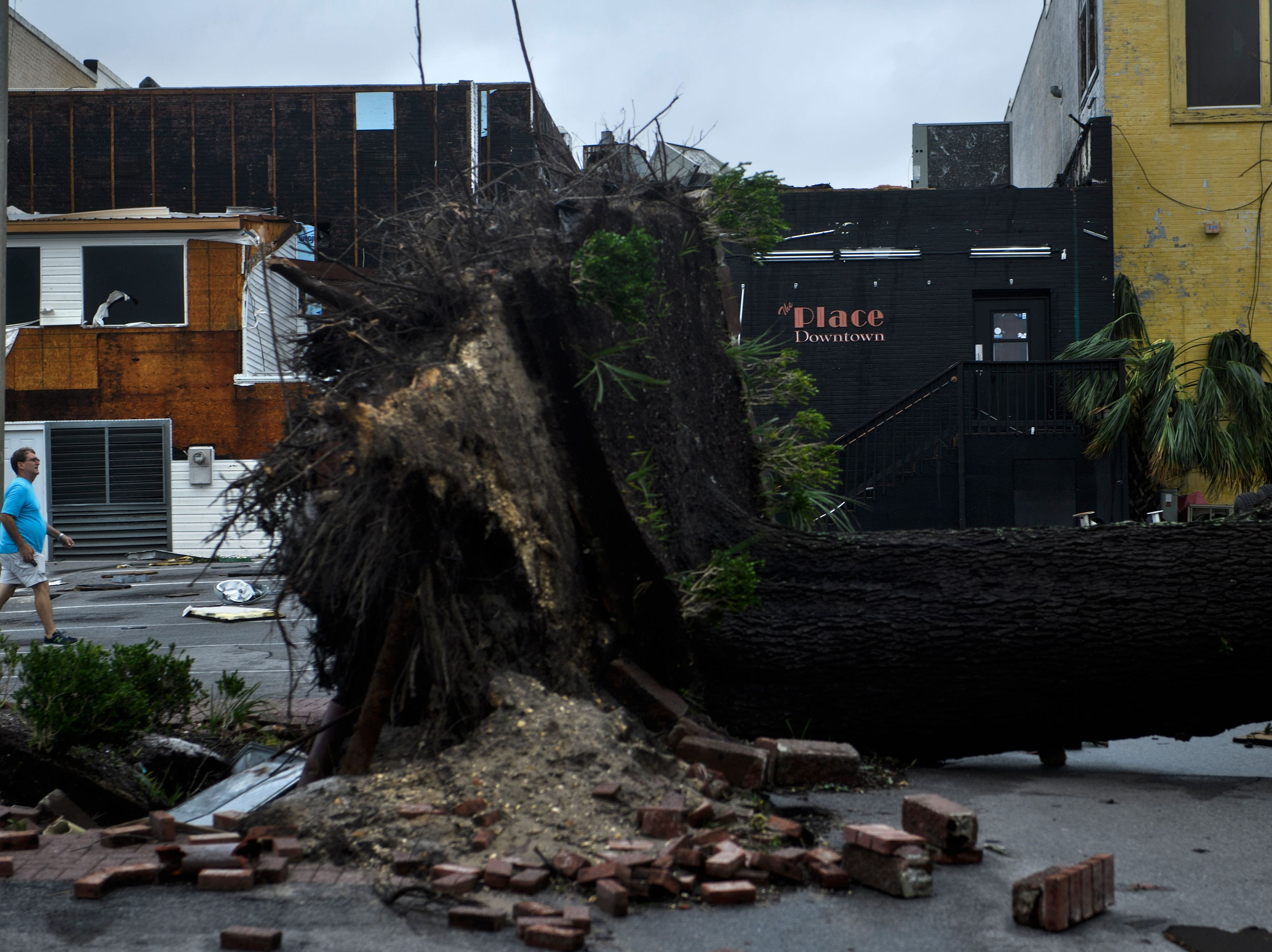 An uprooted tree is seen after Hurricane Michael in Panama City, Florida, on October 10.