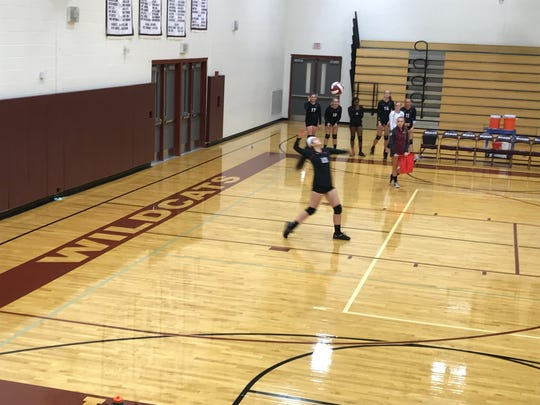Kylie Lynch serves for Elmira during a volleyball game Oct. 2 against Johnson City.