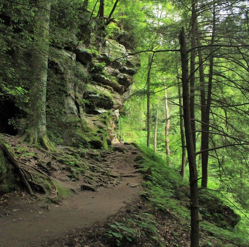 Great places to hike. Here's what you told us.