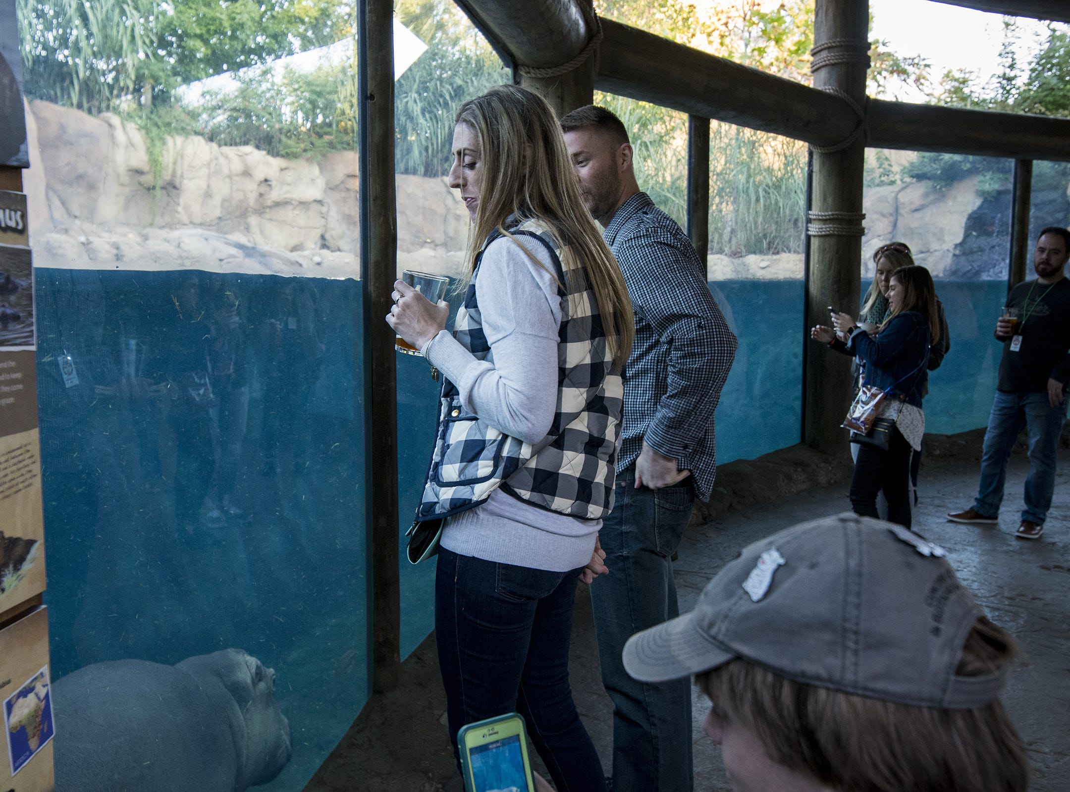 VIP guests get special access to watch Fiona and Bibi swim in Hippo Cove during Zoo Brew.