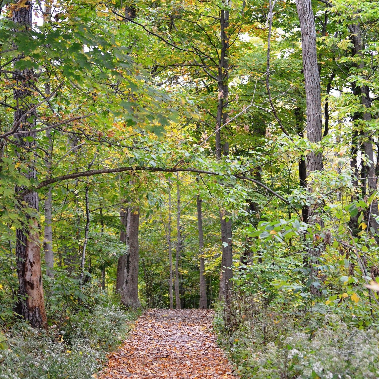 Cincinnati Nature Center: Ten trails to hike