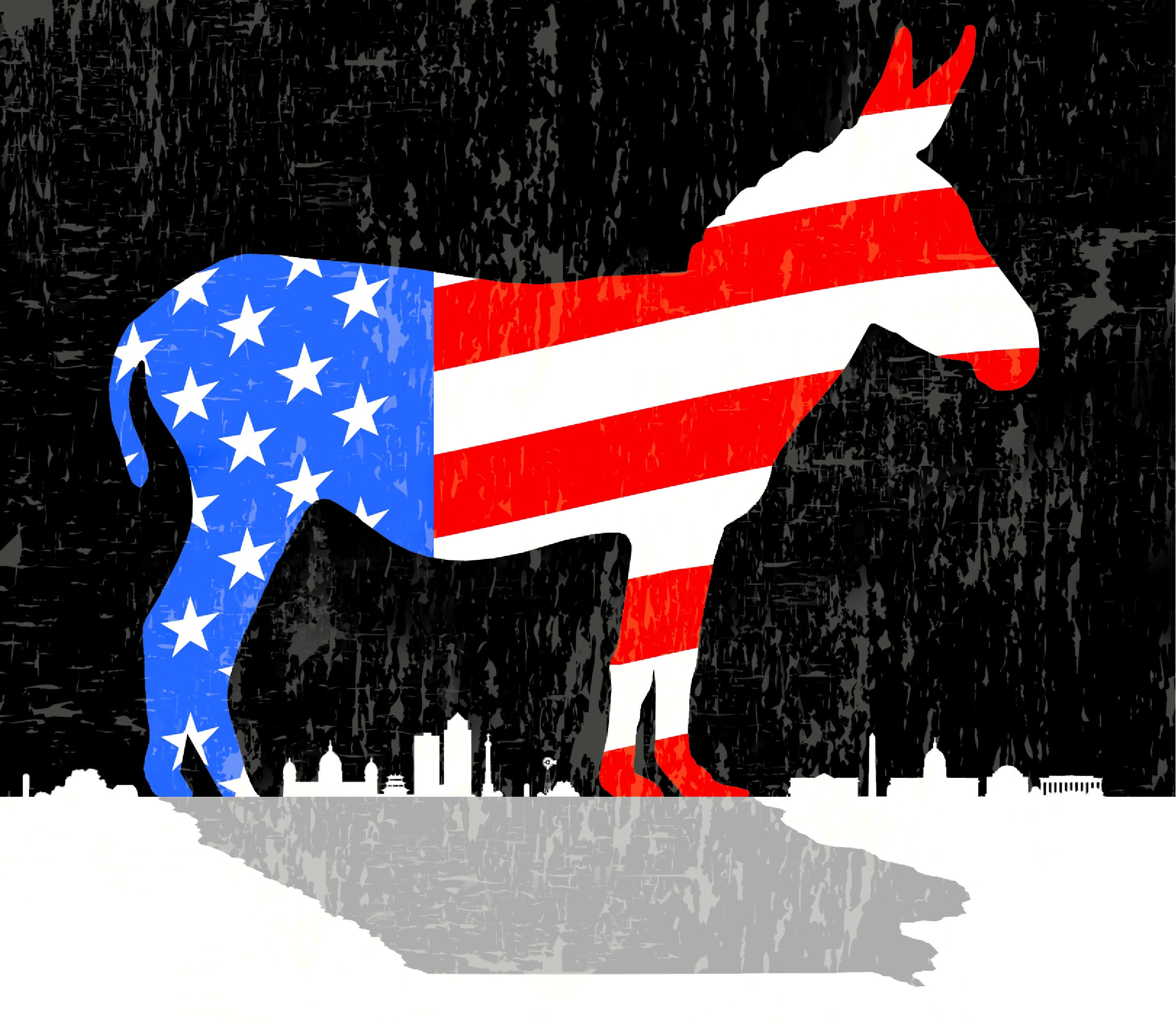 Democratic Party's candidates for president