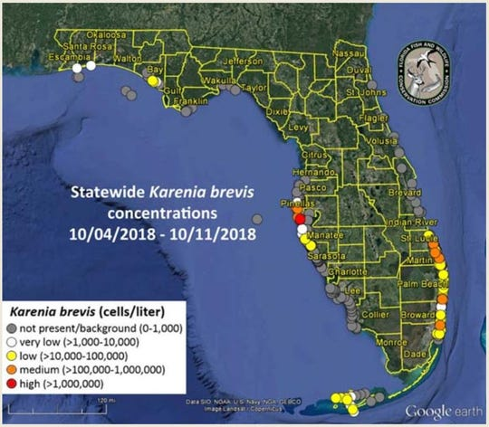 Red tide counts were minimal in Southwest Florida waters this week.