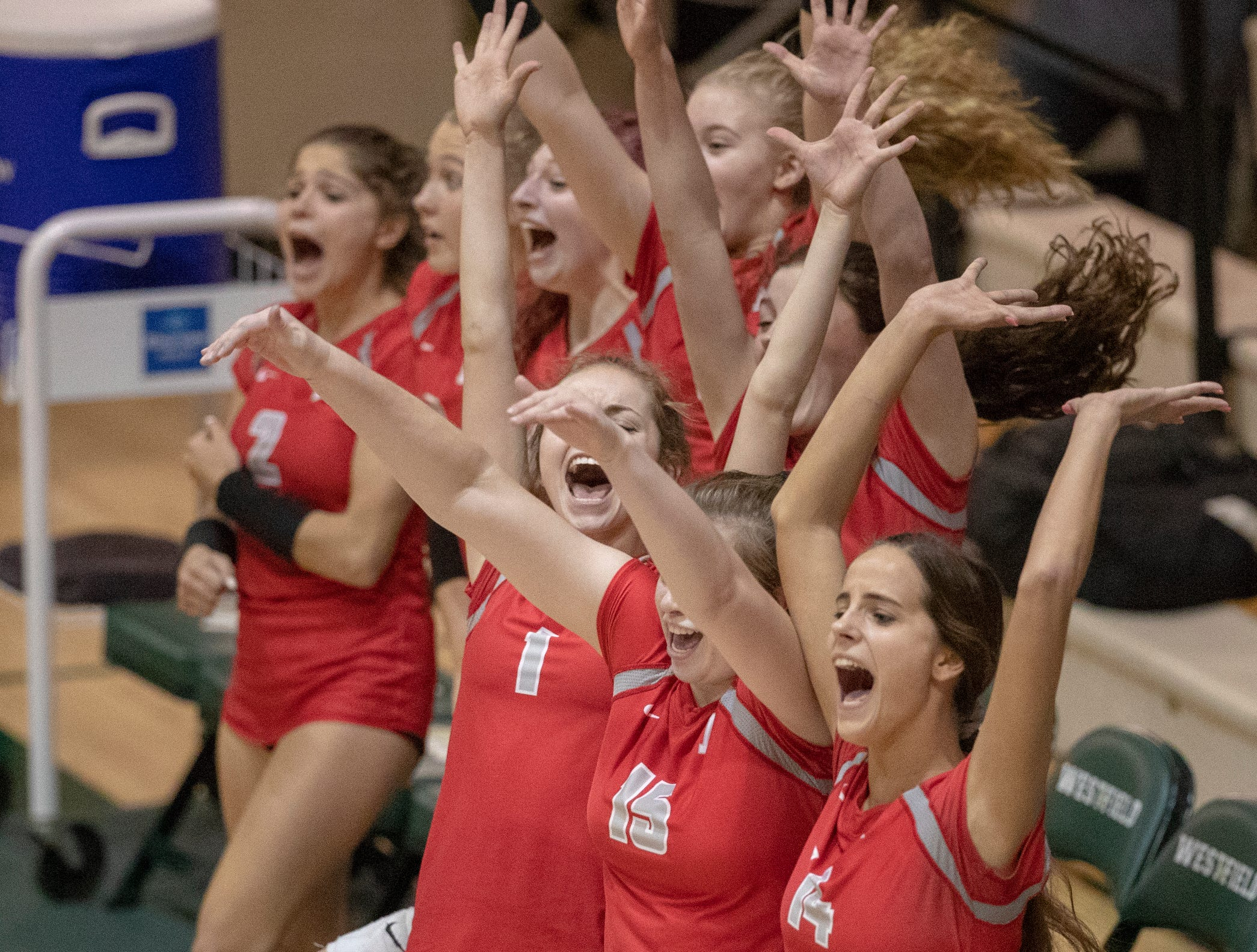 Fishers High School celebrates during their game against Hamilton Southeastern High School that saw them winning in three straight sets in the first round of the volleyball sectional at Westfield High School, Westfield, Thursday, Oct. 11, 2018. The win matches them up with Westfield High School for a game on Saturday morning at 11a.m.