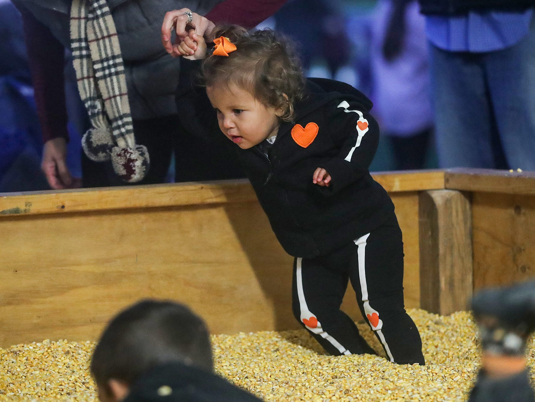 Katherine Bridgwaters, 1, wades through a pen full of corn kernels on opening night of the annual Headless Horseman Halloween festival at Conner Prairie in Fishers, Ind., Thursday, Oct. 11, 2018. The festival is held from 6 to 9 p.m. every Thursday through Sunday, ending Oct. 28, 2018.