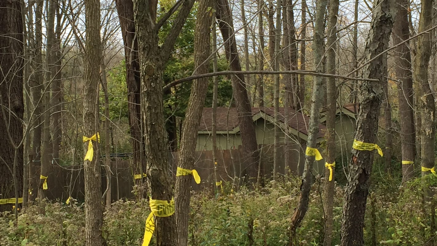 Wehr Nature Center to log 300 hardwood trees killed by herbicide