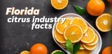 Citrus grown in Florida primarily ends up in juice form on kitchen tables throughout the world.