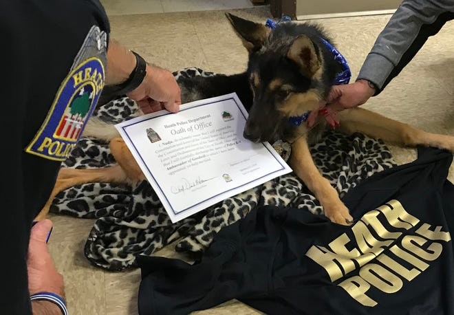 Heath Police Chief Dave Haren presents Nadja, a rescued German Shepherd with a terminal disease, with the oath of office to be the Heath Police K9 for a day.