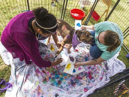 Kim Kammeyer, voluntaria de Gabby Case y Friends for Life, ayuda a Belle a pintar una foto en BARKtoberfest en Gilbert el 10 de octubre de 2015.
